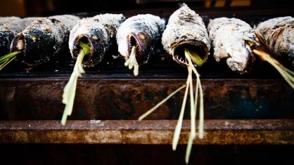 Fish, Kompong Cham, Cambodia