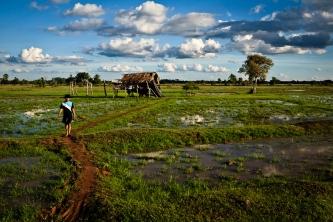 Si Phan Don (Four Thousand Islands), Laos