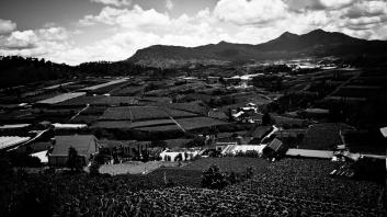 Central highlands, Vietnam
