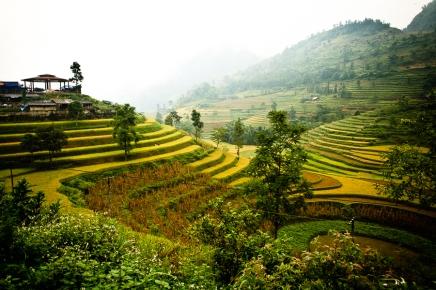 Can Cau, Vietnam